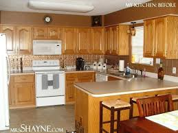best rated kitchen cabinets astounding most popular