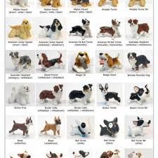 dog breeds list in dog type cool all small dogs breeds cute dog