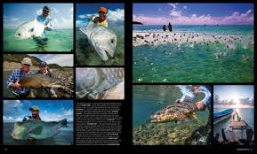 photo essay photographers the landscape is my canvas photographs and fly fishing by aaron goodis