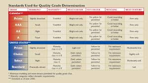 Canadian Beef Grading Chart A Lesson In Steak Intro And Grading Part 1 The Mind Of Dh