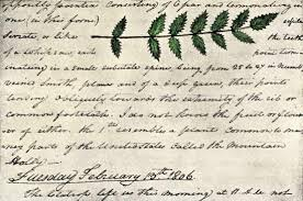 william clark american explorer britannica com a detail of a page from william clark s expedition diary including a sketch of evergreen