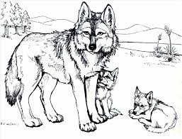 Small Picture Coloring Pages Forest Wildlife Art Pups Coyote Friend Of Printable
