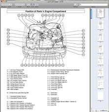 1996 Toyota 4runner Engine Diagram - Trusted Wiring Diagrams •