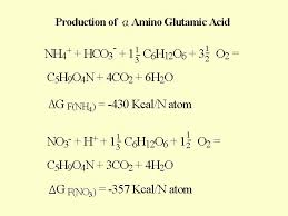 the plant gains about 80 kilo calories for each gram atom of nitrogen in the ammonium form as opposed to the ion the same acid from nitrate