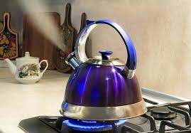 tea kettle for gas stove whistle top best glass
