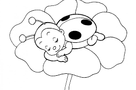Small Picture Best Ladybug Coloring Pages 33 On Coloring for Kids with Ladybug