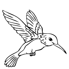 Small Picture Hummingbird Coloring Pages 6852 11291200 Free Printable