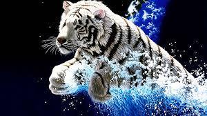 Best 3D Tiger Wallpapers For Desktop ...