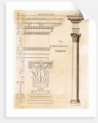 Illustration Of Corinthian Columns Posters Prints By Corbis