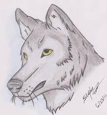 Realistic Wolf Designs Realistic Wolf Drawing Stephaniecardona 2020 Jun 24 2011