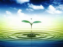 3D Leaf Water Drop HD Wallpaper