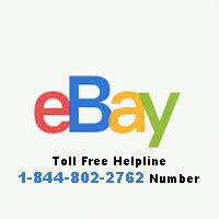 Ebay corporate office Designing Ebay Toll Free Customer Care 18448022762 Ebay Corporate Office Phone The Motley Fool Ebay Toll Free Customer Care 18448022762 Ebay Corporate Office