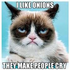 grumpy cat quotes frozen.  Quotes Funny Grumpy Cat Pictures And Quotes GagsMedia For Cat Frozen O