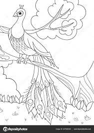 Colorare Cartoni Animati Per I Bambini Un Uccello Una Piuma Di Un