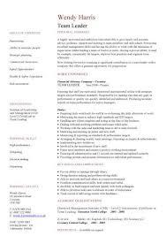 Leadership Skills Resume Sample | Printable Resume Templates