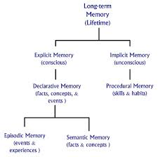 Types Of Memory Chart Human Memory The Process To Acquire Store Retain Long Term