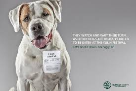 humane society ads. Unique Ads And Humane Society Ads S