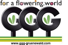 Image result for grünewald logo