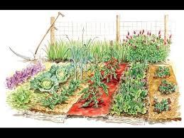beginner vegetable garden. Interesting Vegetable 7 Simple Strategies For Successful Vegetable Garden A Beginner For
