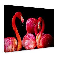 pink flamingo canvas print wall art com