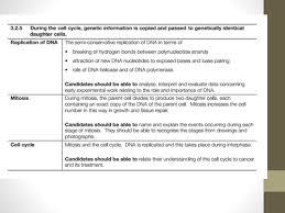 mitosis and meiosis essay understanding meiosis ap biology varsity tutors