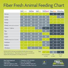Lifestyle Fiber Fresh Feeds