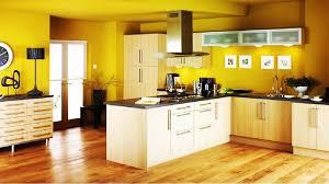 color combination painted kitchen cabinet idea