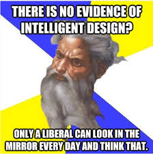 Intelligent Design Meme - Picture | eBaum's World via Relatably.com