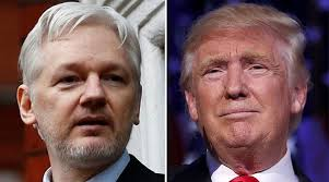 Wikileaks office Landscape Wikileaks Founder Julian Assange And Us Presidentelect Donald Trump Almanar Trump owes His Office To Assange Wikileaks Supporters Almanar