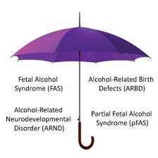 what is fasd fasd forever umbrella simply put fetal alcohol