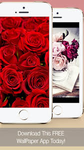screenshot 1 for flower wallpapers free beautiful roses and flowers hd backgrounds