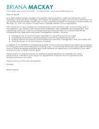 Cover Letter For Communications Director Eursto Com