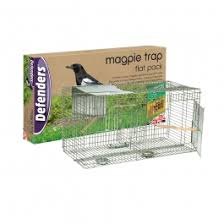 magpie trap flat pack