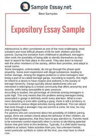 application essay pay best ever best college application essay ever