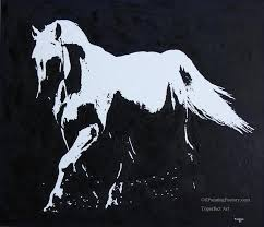 3 black and white horse