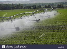 Center Pivot Irrigation System Watering Crops In North Dakota Stock