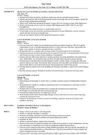 Loan Support Resume Samples Velvet Jobs