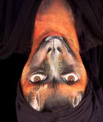fruit bat jpg 2190 2580 elephant costumesface paintingscostume ideas