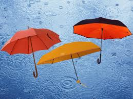 Ladies Designer Umbrella Best Umbrellas To Save You From Autumn Showers And Beyond
