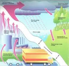 Кислотные осадки Загрязнение воздуха Чистая Экология Загрязнение воздуха Кислотные осадки