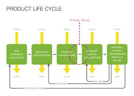 best cycles images infographic life cycles and  product life cycle of colgate toothpaste essay typer product life cycle of colgate toothpaste product life cycle the types of people who would attend