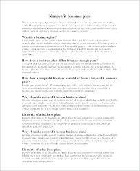 Nonprofit Business Plan Template Organization Strategic Plan Template Non Profit Business