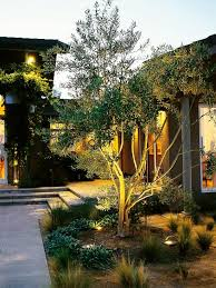 Small Picture Best 25 Landscape lighting design ideas on Pinterest Landscape