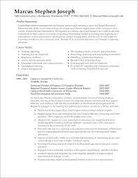 Resume Professional Summary Example Professional Summary No ...