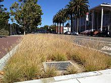 thermal pollution a bioretention cell for treating urban runoff in california