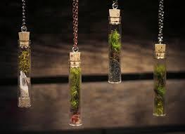terrarium necklaces inhabitat green design innovation architecture green building