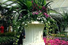 huge plant pots full size of giant flower pots large ceramic for outdoor planter ideas huge plant pots