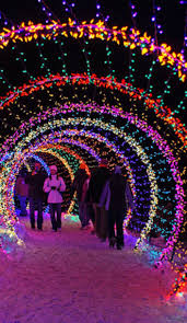 outdoor xmas lighting. Best 25 Xmas Lights Ideas On Pinterest Outdoor Lighting