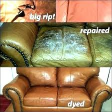 dog leather couch dog friendly sofa leather couches and dogs dog friendly sofa claws best dog