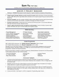 37 Elegant Project Coordinator Resume Format Awesome Resume